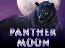 Видео-слот Panther Moon